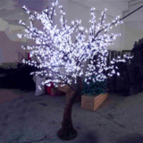 Witte led bomen