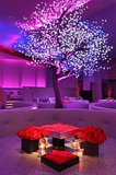 Led decoratie boom